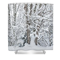 The Tree- Shower Curtain