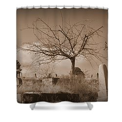 The Tree On Boot Hill  Shower Curtain