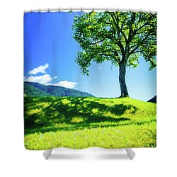 Shower Curtain featuring the photograph The Tree On The Hill by Silvia Ganora