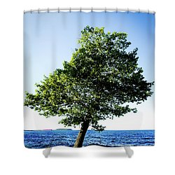 Shower Curtain featuring the photograph The Tree by Onyonet  Photo Studios