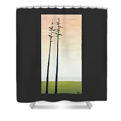 The Trees Are So Tall Here   Shower Curtain by Carolyn Doe