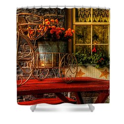 The Tricycle Shower Curtain by Lois Bryan