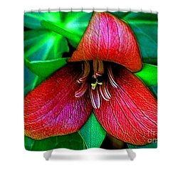 Shower Curtain featuring the photograph The Trillium by Elfriede Fulda