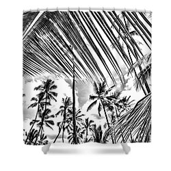 Shower Curtain featuring the photograph The Tropics by DJ Florek