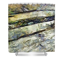Shower Curtain featuring the painting The Trust Upon The Fence Of The Silver Dust A Must And Trust by Sir Josef - Social Critic - ART