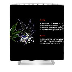 The Truth About Mary Jane Shower Curtain