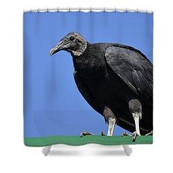 The Undertaker Shower Curtain