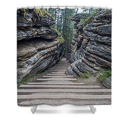 The Unknown Path Shower Curtain by Alpha Wanderlust