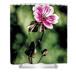 Shower Curtain featuring the photograph The Unknown Weed by Onyonet  Photo Studios