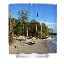The Unspoiled Beauty Of Barefoot Beach In Naples - Landscape Shower Curtain