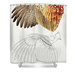 The Upper Side Of The Pheasant Wing Shower Curtain
