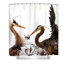 The Valentine's Gift Shower Curtain