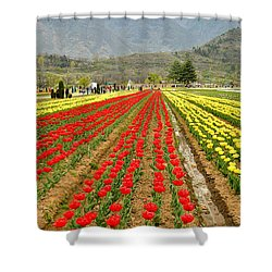 The Valley Blooms Shower Curtain by Fotosas Photography