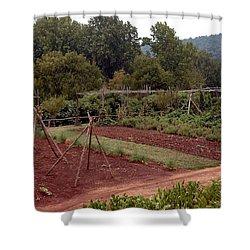 The Vegetable Garden At Monticello II Shower Curtain by LeeAnn McLaneGoetz McLaneGoetzStudioLLCcom