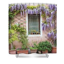 The Venice Italy Window  Shower Curtain