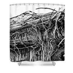 The Vines Awaken Shower Curtain