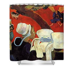The Vision After The Sermon Jacob Wrestling With The Angel 1888 Shower Curtain