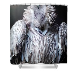 The Vulture Shower Curtain