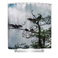 The Vultures Are Waiting Shower Curtain