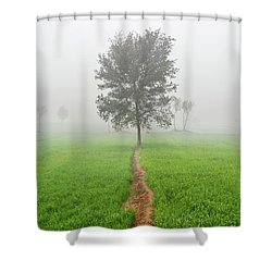 The Walking Tree Shower Curtain