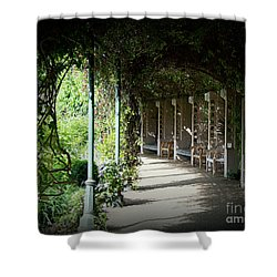 Shower Curtain featuring the photograph The Walkway by Lisa L Silva