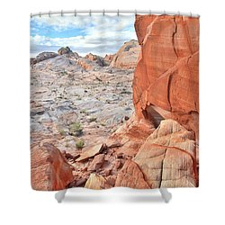 The Wall At Valley Of Fire Shower Curtain