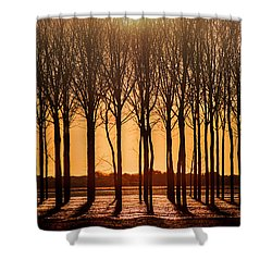 The Walnut Grove Shower Curtain