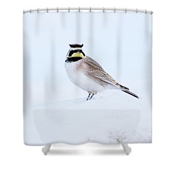 The Warrior Shower Curtain