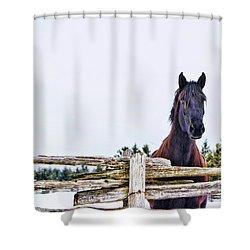 The Watcher 2 Shower Curtain