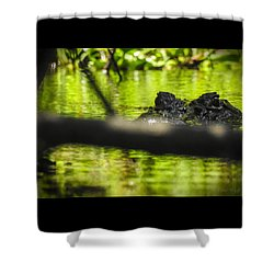 The Watcher In The Water Shower Curtain