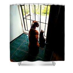 The Watchers Shower Curtain