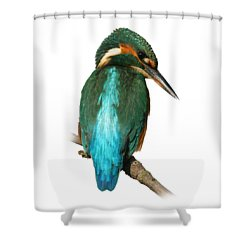The Watchful Kingfisher T-shirt Shower Curtain