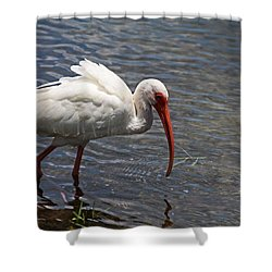 The Water's Edge Shower Curtain