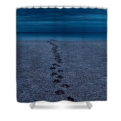 Shower Curtain featuring the photograph The Way Back by Julian Cook