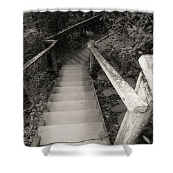 Shower Curtain featuring the photograph The Way by Beto Machado