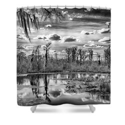 Shower Curtain featuring the photograph The Wetlands by Howard Salmon