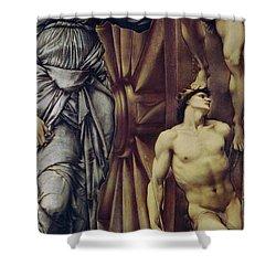 The Wheel Of Fortune Shower Curtain by Sir Edward Burne Jones