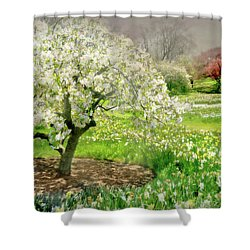 Shower Curtain featuring the photograph The White Canopy by Diana Angstadt
