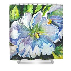 The White Hibiscus In Early Morning Light Shower Curtain by Carol Wisniewski