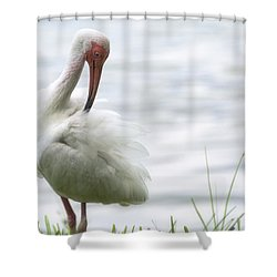 The White Ibis  Shower Curtain by Saija  Lehtonen