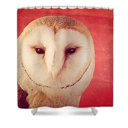 The White Owl Shower Curtain by Pedro Venancio