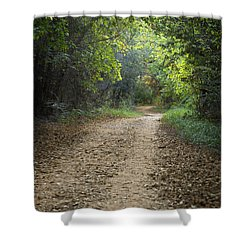 The Winding Path Shower Curtain