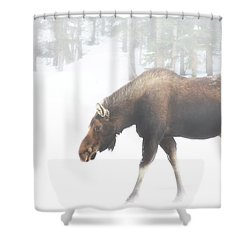 The Winter Moose Shower Curtain