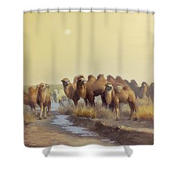 The Winter Of Desert Shower Curtain by Chen Baoyi