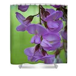 Shower Curtain featuring the photograph The Wisteria by Mark Dodd