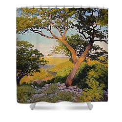 The Witches On The Hill Shower Curtain