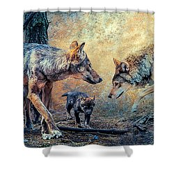 Shower Curtain featuring the photograph The Wolf Family by Brian Tarr