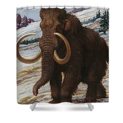 The Woolly Mammoth Is A Close Relative Shower Curtain by Charles R. Knight