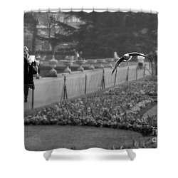 The Writers Story Shower Curtain