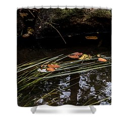Shower Curtain featuring the photograph The Year Passes Gently by Odd Jeppesen